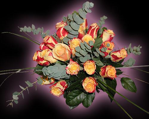 Dutzend Rosen apart gebunden